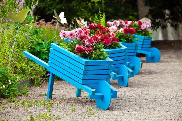Tło projektu ogrodu. krajobraz w parku z niebieskimi ręcznie robionymi wózkami ozdobionymi kwiatami