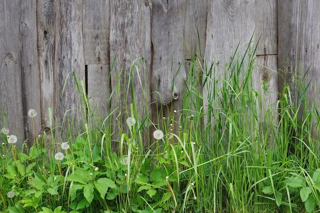 Tło starego ogrodzenia i zielonej trawy