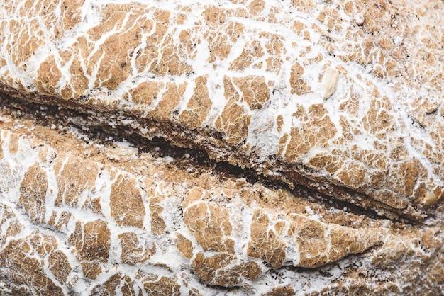 Tło świeżo upieczonego bochenka chleba żytniego