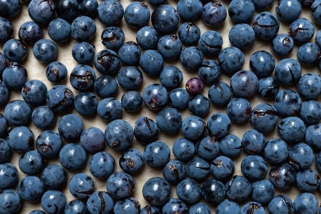Tło świeżych winogron isabella z chorwacji