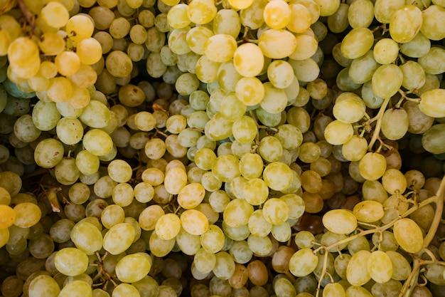 Tło świeżych winogron