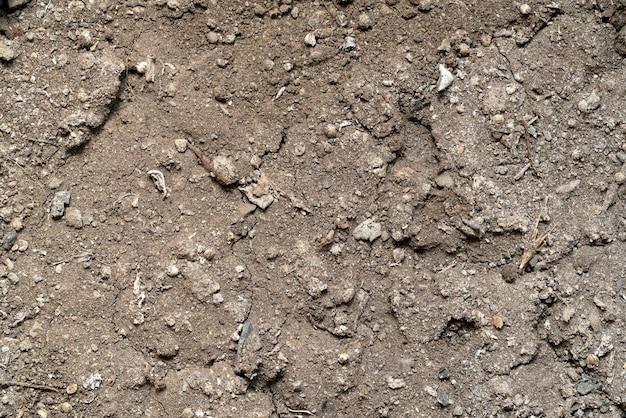 Tło tekstury gleby ogrodowej, z bliska