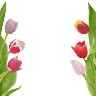 Tło tulipany akwarela
