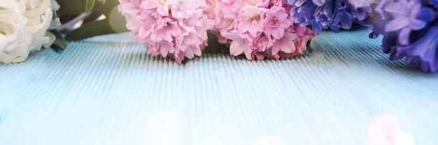 Tło wiosna z kwiatem