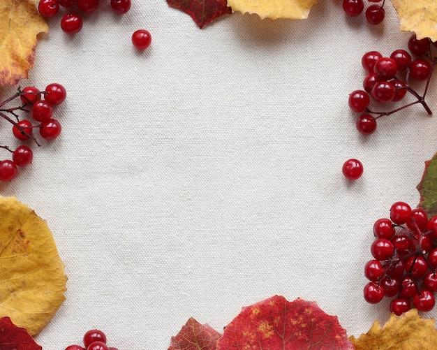 Tło z jesiennych liści osiki i jagód kaliny, widok z góry