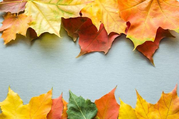 Tło z liści jesienią
