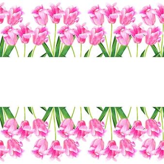 Tło z różowe tulipany. ręcznie rysowane akwarela ilustracja. odosobniony.