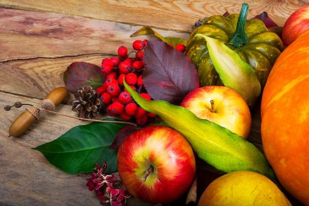 Tło zbiorów z jabłkami, jagód jarzębiny, zielony kabaczek
