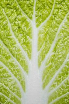 Tło zbliżenie zielona sałata