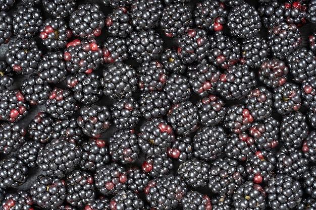 Tło ze świeżych organicznych jeżyn, z bliska. dużo dojrzałych soczystych dzikich owoców dzikich jagód leżących na stole. widok z góry