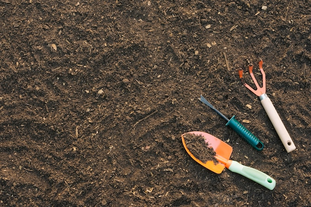 Tło ziemia z narzędziami w ogródzie