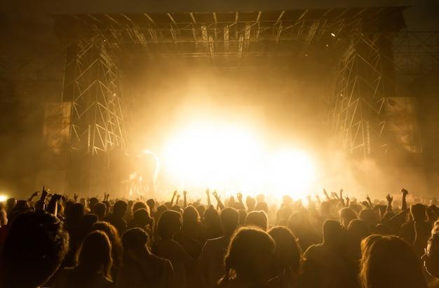 Tłum fanów na koncercie