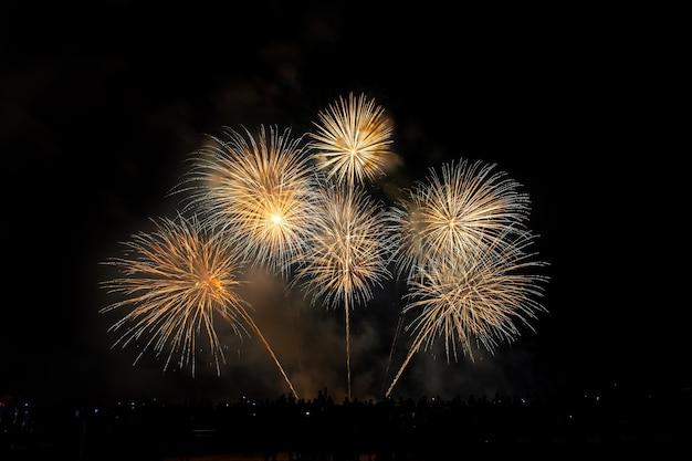Tłum wygląda wakacyjne fajerwerki w ciemne wieczorne niebo.