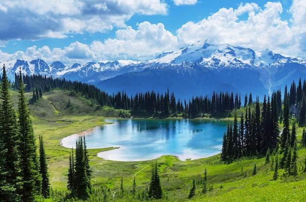 To jest piękny krajobraz emerald lake w kanadyjskim parku narodowym youhe