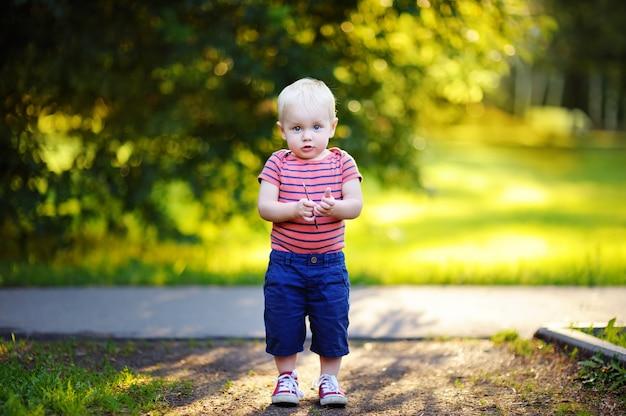 Toddler chłopiec spaceru w parku w słoneczny dzień