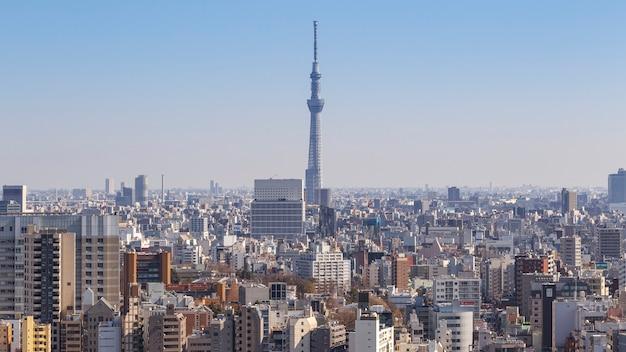 Tokio, japonia - 11 lutego 2016: pejzaż tokio z tokyo skytree lub tokyo sky tree najwyższą konstrukcją w japonii w dniu 11 lutego 2016 r. w tokio, japonia.