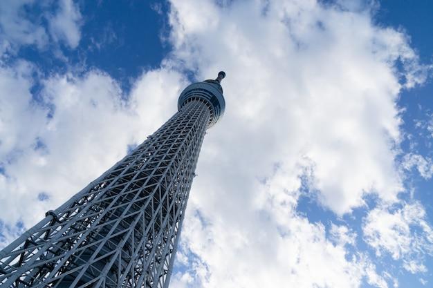Tokio nieba drzewo w sezonie letnim z niebieskim niebem
