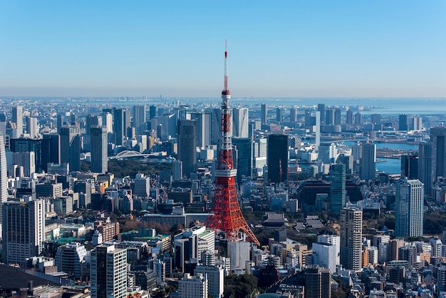 Tokio wierza i tokio pejzaż miejski, panoramiczny widok w dniu w tokio, japonia
