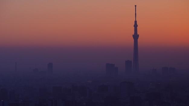 Tokyo city i tokyo sky tree tower widok z lotu ptaka na miasto tokio ze słynnym celem podróży landma