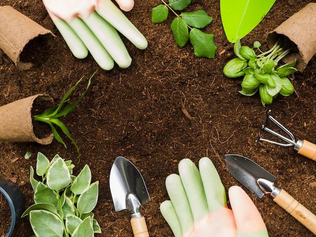 Top narzędzia ogrodnicze i rośliny