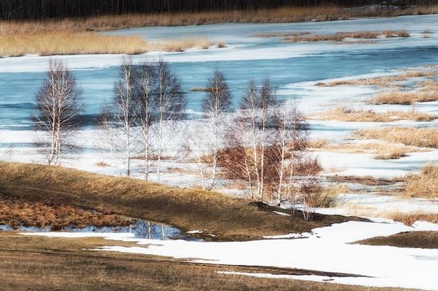 Topniejący śnieg na jeziorze wczesną wiosną. drzewa na brzegu jeziora. piękny wiosenny krajobraz. ural południowy, rosja