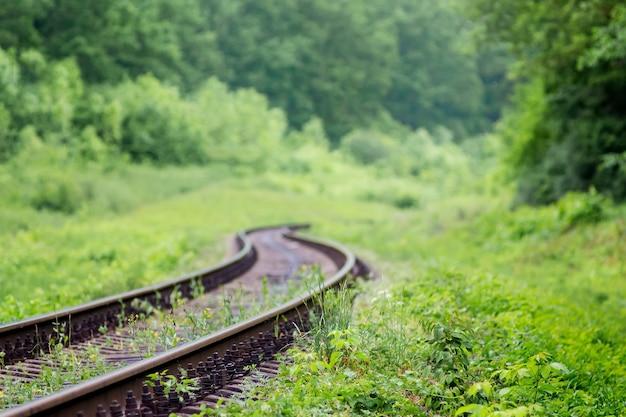 Tor kolejowy prowadzący zygzakiem wśród malowniczej przyrody