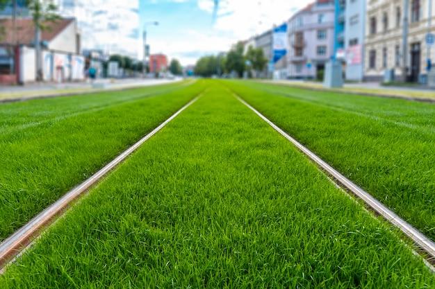 Tor tramwajowy pokryty trawą