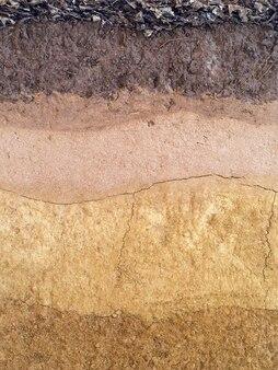 Torfowa gleba jako tło