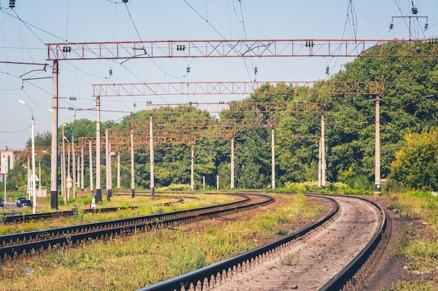 Tory kolejowe nowoczesnych zelektryfikowanych kolei w pobliżu lasu