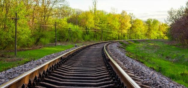 Tory kolejowe, wiosenny krajobraz przy drodze, przy której przejeżdża pociąg.