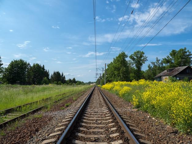 Tory kolejowe wśród żółtych pól
