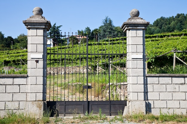 Toskania, włochy. luksusowa włoska willa na wsi, blisko winnicy lambrusco
