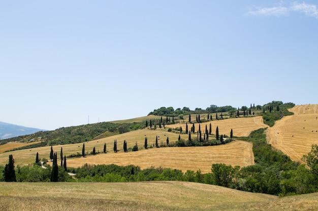 Toskania wzgórza widok lato panorama, włoski krajobraz
