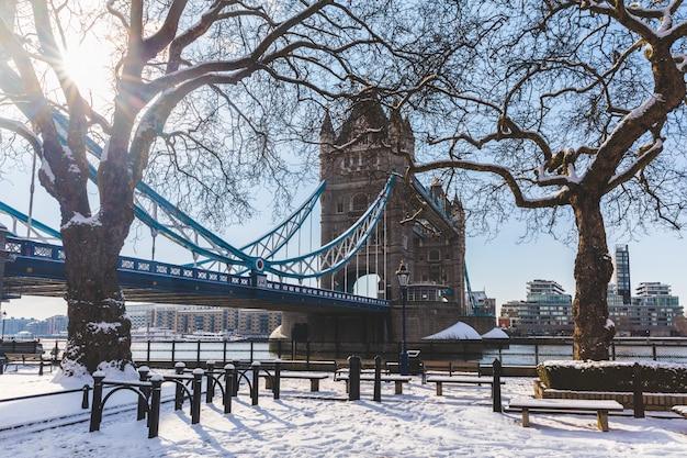 Tower bridge i drzewa w londynie ze śniegiem