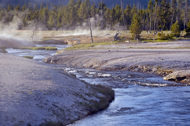Toxic river w yellowstone