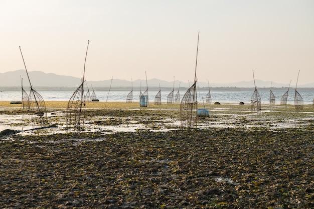 Tradycyjne bambusowe pułapki w jeziorze lam takong w nakhon ratchasima