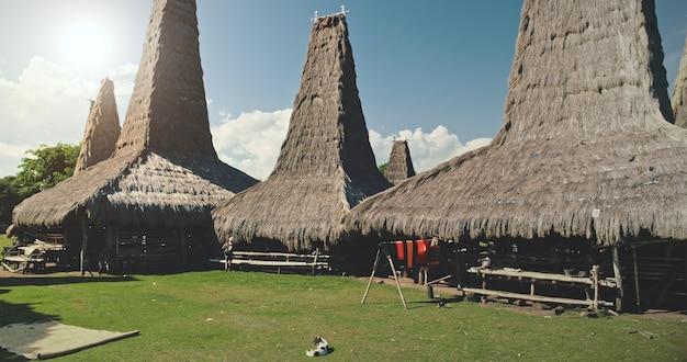 Tradycyjne domy zbliżenie dachy w wiosce indonezji. unikalny projekt dachów domów indonezyjskiej atrakcji w dolinie zielonej trawy. sumba island bliska punkt orientacyjny w słoneczny letni dzień