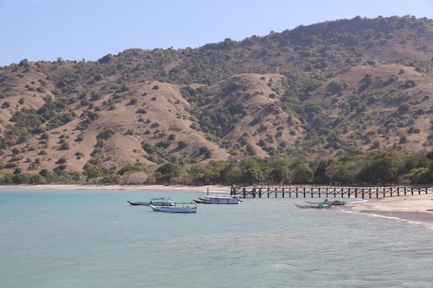 Tradycyjne drewniane łodzie parkujące w pobliżu drewnianego molo na plaży z czystą wodą