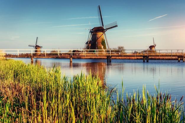 Tradycyjne holenderskie wiatraki z kanału rotterdam. holandia.