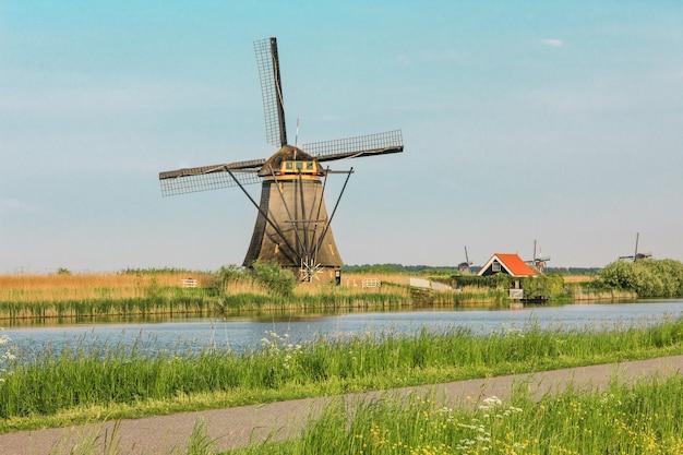Tradycyjne holenderskie wiatraki z zieloną trawą na pierwszym planie, holandia