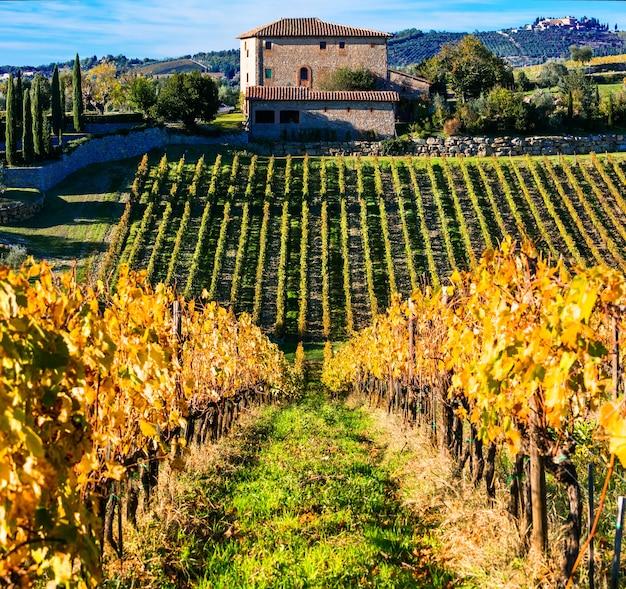 Tradycyjne krajobrazy toskanii, dekoracje z jesiennymi winnicami. włochy