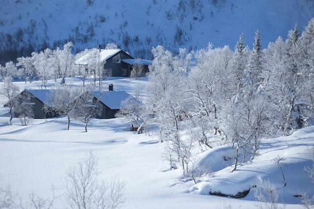 Tradycyjny norweski drewniany dom i góry w oddali. lofoty. norwegia. podróż po świecie