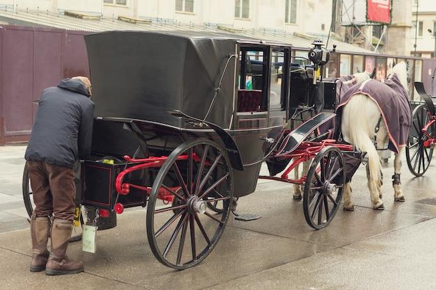 Tradycyjny przewóz dwóch koni na starej ulicy w wiedniu austria głowy koni w zaprzęgu