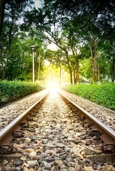 Tranzyt na stos kolejowy park publiczny