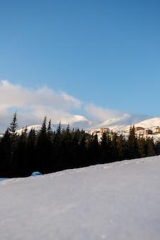 Trasa narciarska i wyciąg krzesełkowy z ośnieżonymi drzewami w słoneczny dzień. teren narciarski combloux, francuskie alpy