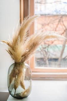 Trawa pampasowa w szklanym wazonie przy oknie, warstwa trzciny, nasiona trzciny.