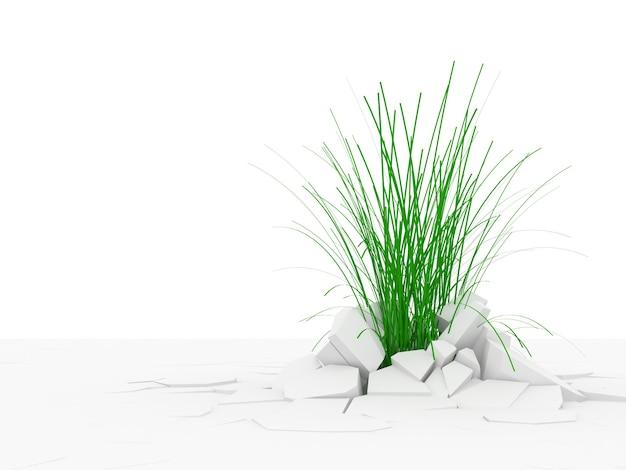 Trawa przerastająca podłogę