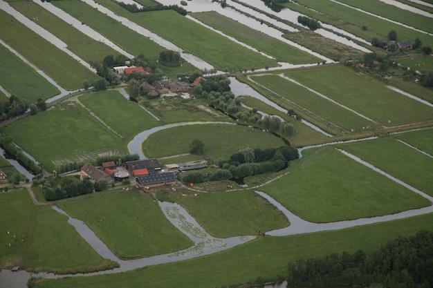 Trawiaste pole z domem i drzewami na holenderskim polderze