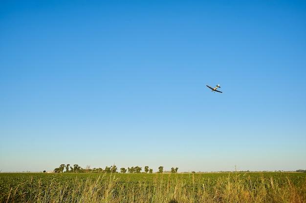 Trawiaste pole z samolotem lecącym nad nimi na niebieskim niebie