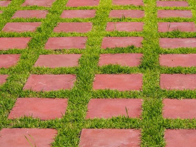 Trawnik pokryty jest cegłami.